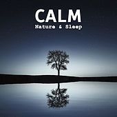 Calm Nature & Sleep – Peaceful Music for Relaxation, Restful Sleep, Deep Dreams, Soothing Sounds to Calm Down, Inner Harmony, Sweet Dreams, Music at Goodnight by Nature Sounds for Sleep and Relaxation