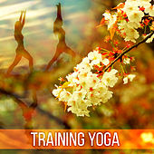 Training Yoga – Chakra Balancing, Inner Calmness, Harmony, Peaceful Music for Meditation, Healing, Pure Relaxation, Clear Mind by Meditation Spa