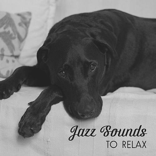 Jazz Sounds to Relax – Smooth Jazz Note, Music to Help You Relax, Night Jazz Club by Smooth Jazz Park