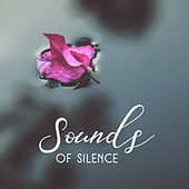 Sounds of Silence – Soft Nature Sounds for Spa, Relaxation, Wellness, Stress Relief, Peaceful Mind, Healing Music, Pure Massage, Inner Harmony by Deep Sleep Relaxation