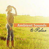 Ambient Sounds to Relax – Chilled New Age Music, Rest with Soft Sounds, Inner Relaxation by Relaxed Piano Music