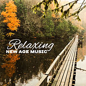 Relaxing New Age Music – Soft Sounds to Rest, Peaceful Music, Chilled Waves by Sounds of Nature Relaxation