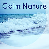 Calm Nature – New Age Relaxing Sounds, Healing Waves, Nature Grasp by Calm Ocean Sounds