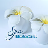 Spa Relaxation Sounds – Beautiful Memories, Soothing Sounds, Music to Rest & Relax by Relaxation and Dreams Spa