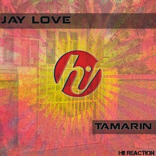 Tamarin by Jay Love