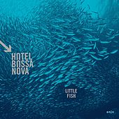 Little Fish by Hotel Bossa Nova