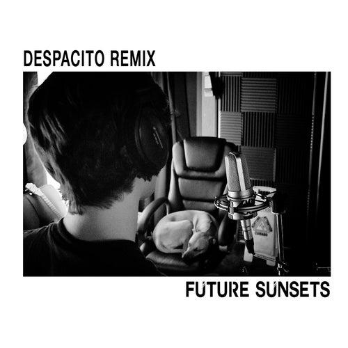 Despacito (Remix) de Future Sunsets