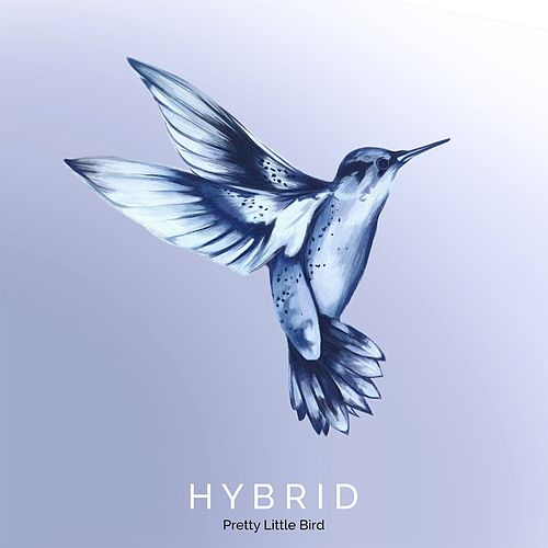 Pretty Little Bird by Hybrid