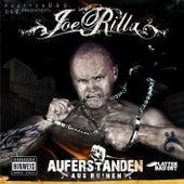 Play & Download Auferstanden aus Ruinen by Joe Rilla | Napster