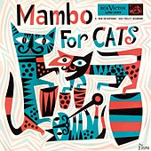 Mambo for Cats by Various Artists