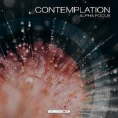 Contemplation (Alpha Focus) by J.s. Epperson