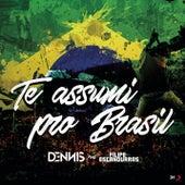 Te Assumi pro Brasil by Dennis Dj