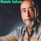 Pequeño Gorrion by Manolo Galvan
