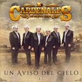 Un Aviso del Cielo by Cardenales De Nuevo León