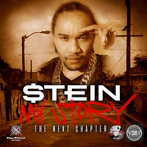 My Story: The Next Chapter by Stein