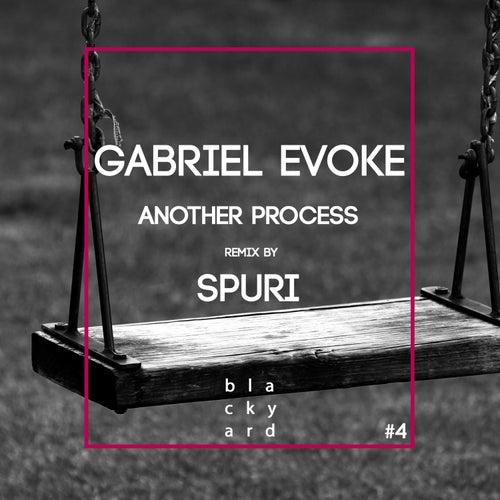 Another Process de Gabriel Evoke
