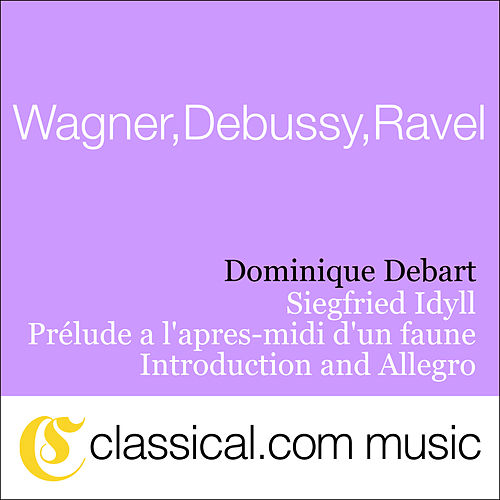 Richard Wagner, Siegfried Idyll by Various Artists