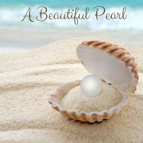 A Beautiful Pearl de Meditation Music Zone