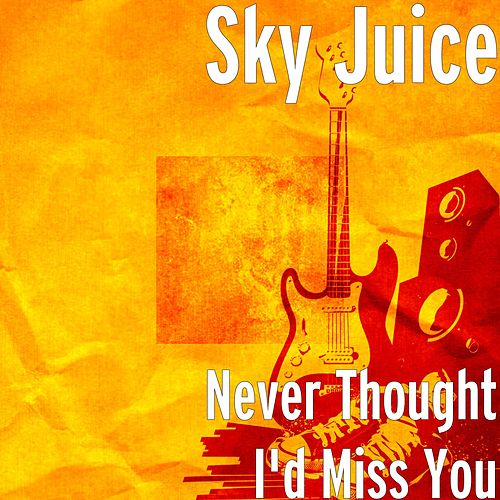 Never Thought I'd Miss You by Skyjuice