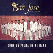 Play & Download Como La Palma De Mi Mano by Banda San Jose De Mesillas | Napster