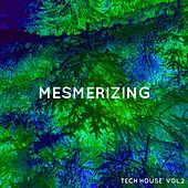 Mesmerizing Tech House, Vol. 2 by Various Artists
