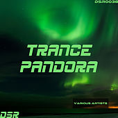 Trance Pandora by Various Artists