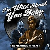 I'm Wild About You Baby von Various Artists