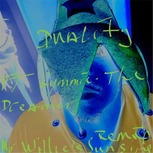 Mr. Willie's Sunsine (Remix) by Duality