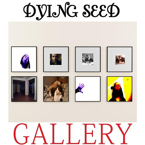 Gallery by Dying Seed