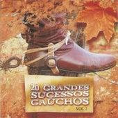 20 Grandes Sucessos Gaúchos, Vol. 2 by Various Artists