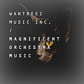 Magnificent Orchestra Music by Various Artists