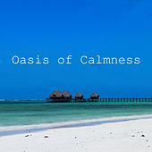 Oasis of Calmness – Peaceful Sounds of Nature to Calm Down, Pure Relaxation, Gentle Rain, Soothing Wind, Stress Relief, Inner Tranquil, Harmony, Healing Music by Best Relaxation Music