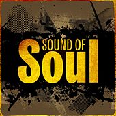 Sound Of Soul by Various Artists