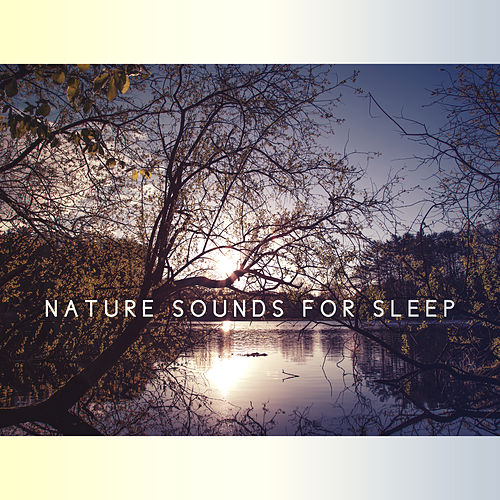 Nature Sounds for Sleep – Relaxation Bedtime, Stress Relief, Deep Dreams, Soothing Music at Goodnight, Sweet Nap, Calming Melodies to Bed, Restful Sleep by Calming Sounds
