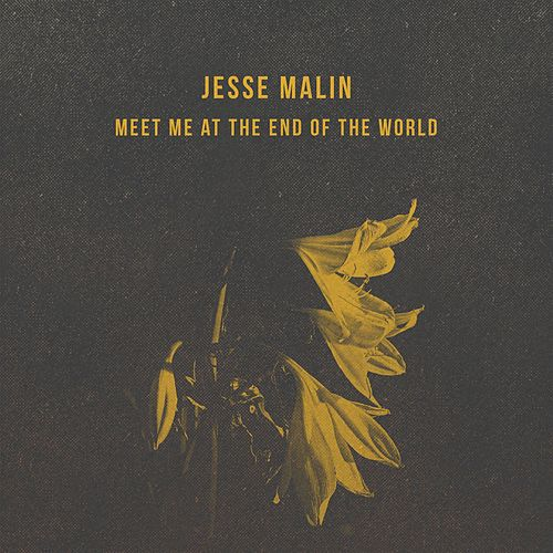 Meet Me at the End of the World by Jesse Malin