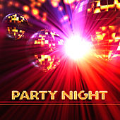 Party Night – Ibiza Lounge, Holiday Chill Out Music, Electronic Music, Beach Party Night, Crazy Holiday, Summertime, Lounge Summer by Electro Lounge All Stars