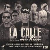 La Calle Me Hizo by Nicky Jam