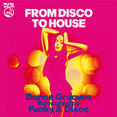 From Disco to House (Dance Grooves Flavoured by Funky & Disco!!) by Various Artists