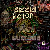 Your Culture - Single by Sizzla