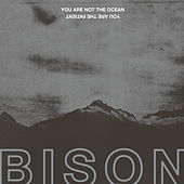 You Are Not the Ocean You Are the Patient by Bison