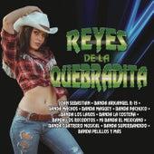 Reyes de la Quebradita by Various Artists