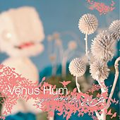 Yes And No by Venus Hum