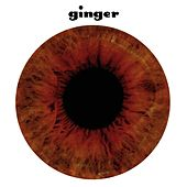 Ginger by Ginger