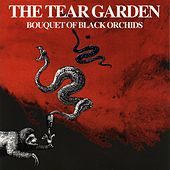Bouquet Of Black Orchids by Tear Garden