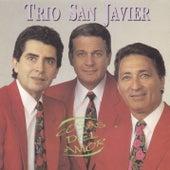 Cosas del Amor by Trio San Javier