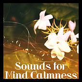 Sounds for Mind Calmness – Relaxing New Age Music, Rest with Soft Sounds, Peaceful Waves, Spirit Journey by Chinese Relaxation and Meditation