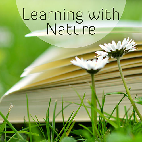 Learning with Nature – Better Memory, Deep Concentration, Study Music, Peaceful Music, Stress Relief, Brain Power, Soft Nature Sounds Help Pass Exam de Studying Music and Study Music (1)