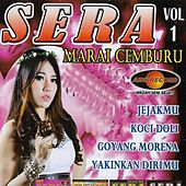Sera Vol 1 by Various Artists