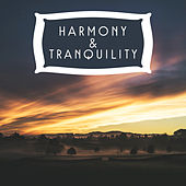Harmony & Tranquility – Zen Music, Pure Relaxation, Stress Relief, Buddha Lounge, Inner Power, Healing Music to Calm Down, Pure Mind by Deep Sleep Relaxation