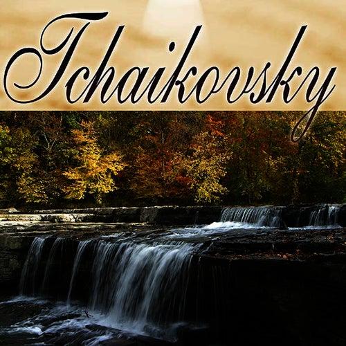 Play & Download Musica Clasica - Peter Tchaikovsky by Pyotr Ilyich Tchaikovsky | Napster